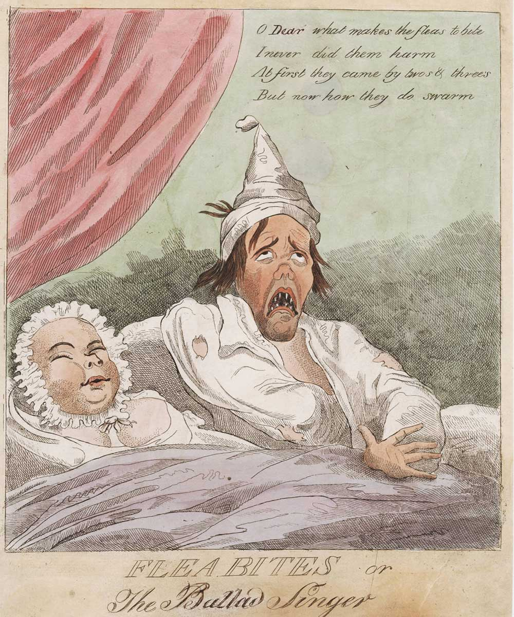 A cartoon of a couple in bed, the man cannot sleep because of flea bites whilst his wife is happily asleep