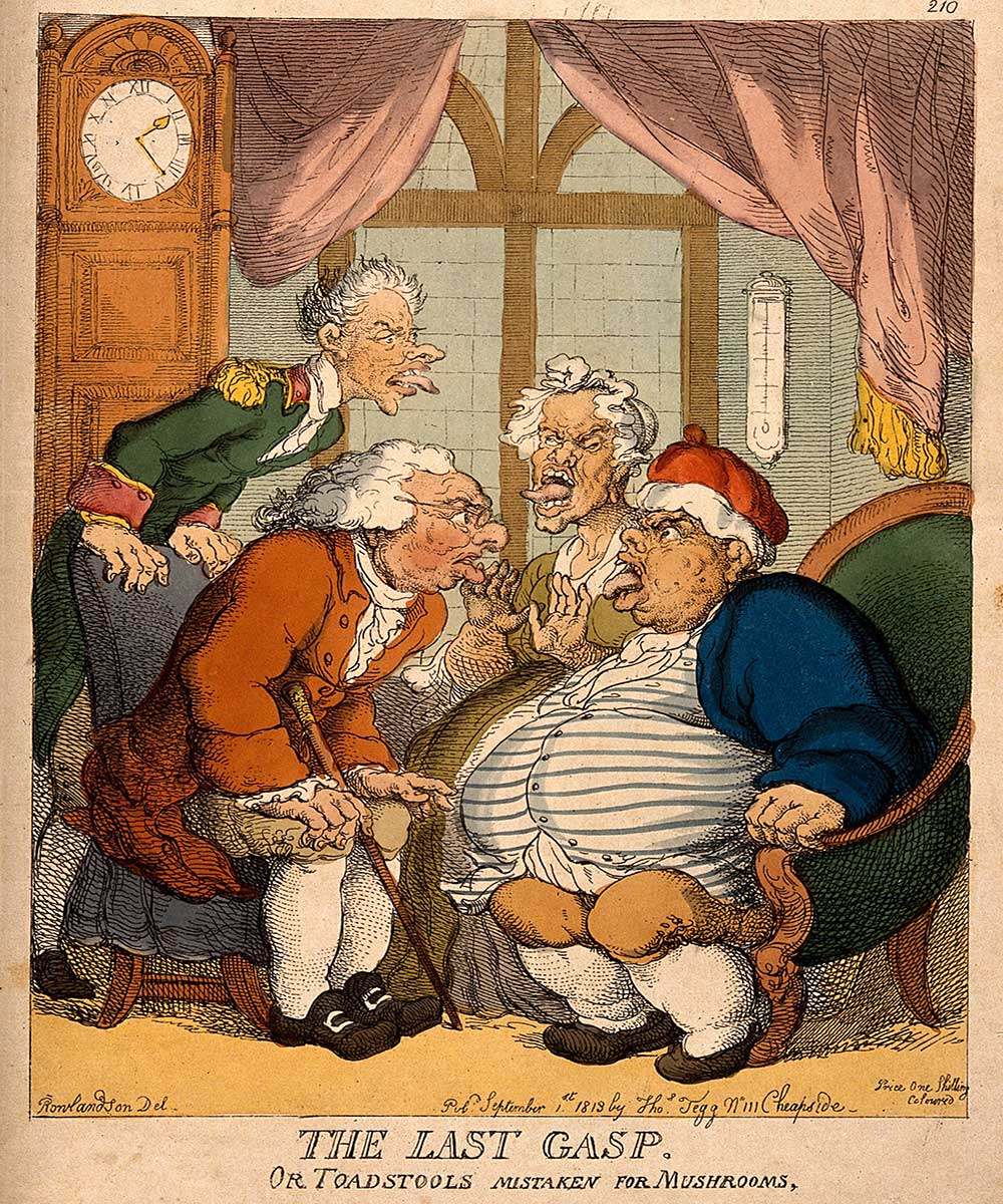 A cartoon on a doctor examining a man, his wife and their servant for suspected food poisoning from toadstools.